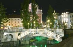 三倍桥梁Ljubljanica河Preseren广场Ljublajana Slove 库存图片