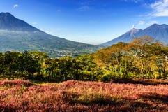 三倍火山视图,安提瓜岛,危地马拉 库存图片
