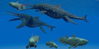 三叠纪的Shonisaurus海军陆战队员爬行动物 免版税图库摄影