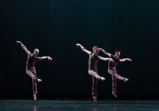 三古典芭蕾` Austen汇集`水池  免版税库存图片