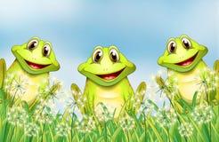 三只愉快的青蛙在庭院里 向量例证