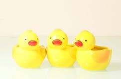 三只有趣的鸭子 库存照片