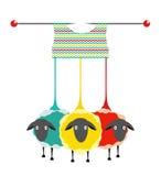 三只编织的纱线绵羊 免版税图库摄影