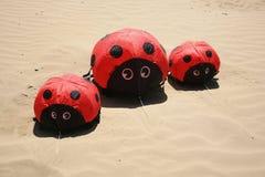 三只逗人喜爱的瓢虫风筝 库存图片