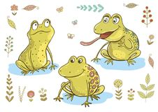 三只逗人喜爱的青蛙 皇族释放例证