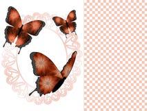 三只铜蝴蝶和卵形框架介绍幻灯片背景 免版税图库摄影