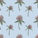 三叶草叶子和花手拉的无缝的样式图表例证 日愉快的patricks圣徒 库存图片