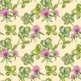 三叶草叶子和花手拉的无缝的样式水彩例证 日愉快的patricks圣徒 免版税库存图片