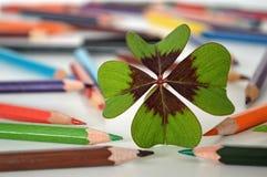 三叶草和色的铅笔在桌上 图库摄影
