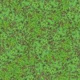 三叶草无缝域的模式 库存照片