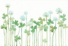 三叶草的水彩例证 库存图片