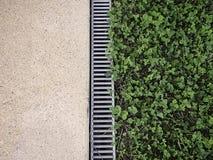 三叶草领域和混凝土 免版税图库摄影