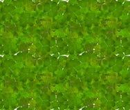 三叶草绿色留下无缝的背景 免版税图库摄影