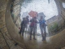 三名伞妇女 图库摄影