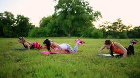 三名妇女在公园做着在草的俯卧撑 影视素材