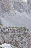 三名登山家旅客做一个挑战对山 库存照片