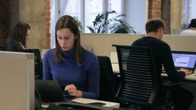 三名雇员在现代办公室时工作,当坐在膝上型计算机 股票录像