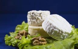 三品种乳酪在一块板材的有莴苣叶子和核桃的圣徒雷米, Crottin d Eyubonne, Shayba 库存图片