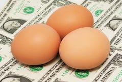 三在美元的鸡蛋 库存图片