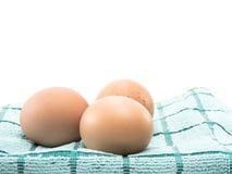 三在织品的鸡蛋 库存照片