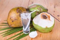 三在玻璃的刷新的绿色椰子果汁在木ta 库存图片