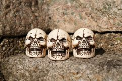 三块微笑的头骨 库存图片