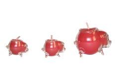 三块玻璃以猪的形式蜡烛台 库存图片