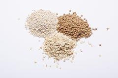 三堆沙粒、扁豆和燕麦粥。 库存图片