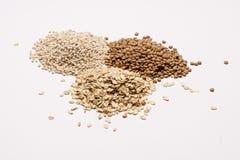 三堆沙粒、扁豆和燕麦粥。 库存照片