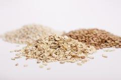 三堆沙粒、扁豆和燕麦粥。 免版税库存图片