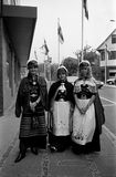 三女学生庆祝他们的学生毕业 库存图片