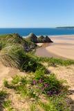 三峭壁海湾Gower夏天阳光美丽的半岛的威尔士英国 免版税图库摄影