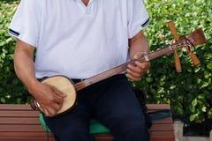 三弦中国吉他 图库摄影