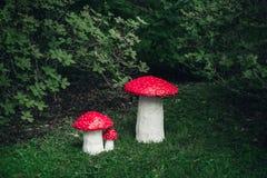 三手工制造的伞形毒蕈 库存照片