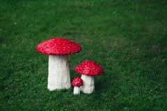 三手工制造的伞形毒蕈 库存图片