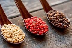 三把匙子用黑,桃红色和白色干胡椒 库存图片