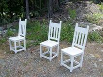 三把白色木椅子在森林 库存图片