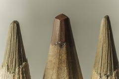 三支棕色铅笔宏观摄影  不同的树荫 免版税库存图片