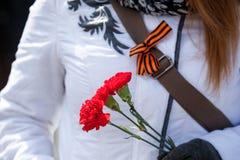 三支红色康乃馨在妇女手里,并且圣乔治丝带在夹克 圣乔治丝带-伟大胜利的标志  图库摄影