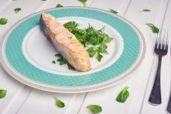 三文鱼内圆角的可口部分用芳香草本、香料和菜-健康食物,饮食或烹调概念 免版税库存照片
