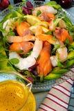 三文鱼和大虾与柑橘调味汁关闭的夏天沙拉 免版税库存图片