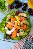 三文鱼和大虾夏天沙拉有鲕梨顶视图,垂直 图库摄影