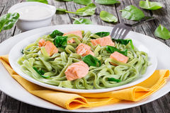 三文鱼和菠菜在白色盘的意大利细面条面团 库存照片