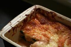 三文鱼和菠菜烤宽面条 免版税图库摄影