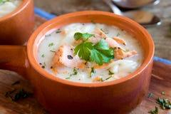 三文鱼汤用面条 库存照片