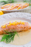 三文鱼烤用莳萝 免版税库存图片
