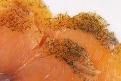 三文鱼用莳萝 免版税库存照片