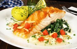 三文鱼用菠菜和Potatos 免版税库存照片