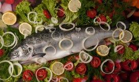 三文鱼蔬菜 库存图片