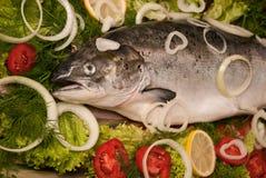 三文鱼蔬菜 图库摄影